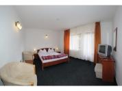 Camera Hotel Paltinis 1